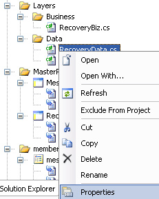 File Properties in Solution Explorer